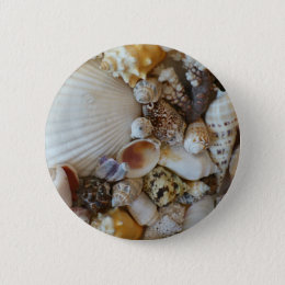 Shells Of Sanibel Button