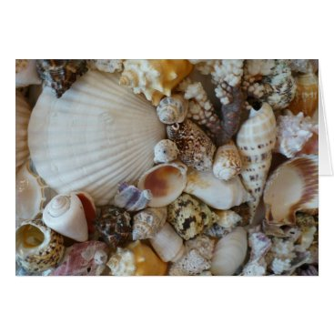 Beach Themed Shells Of Sanibel Card