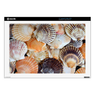 """Shells of the Scallop  species  Zyclochlamys patag 17"""" Laptop Skin"""