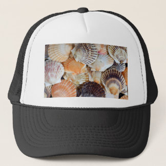 Shells of the Scallop  species  Zyclochlamys patag Trucker Hat