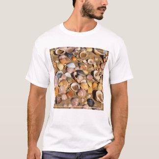 Shells On A Sandy Beach | Andalusia, Spain T-Shirt
