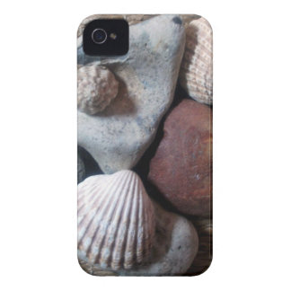Shells on seagrass Case-Mate iPhone 4 cases