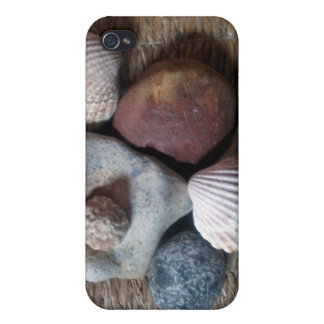 Shells on seagrass case for iPhone 4