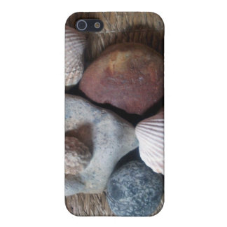 Shells on seagrass iPhone 5 case