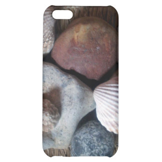 Shells on seagrass iPhone 5C case