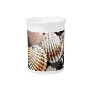 shells on the beach drink pitcher
