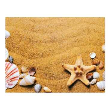 Beach Themed Shells on the beach postcard
