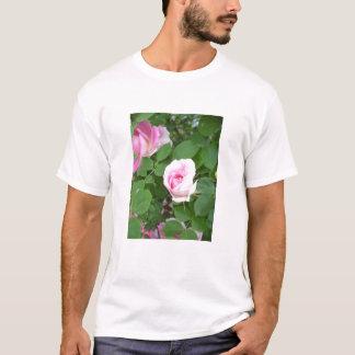 Shells Pic T-Shirt