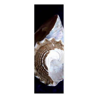 Shells Profile Card or bookmark Business Card