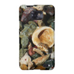 Shells, Rocks and Coral Beach Nature Theme Samsung Galaxy S2 Cover