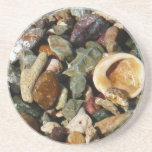 Shells, Rocks and Coral Beach Nature Theme Drink Coaster