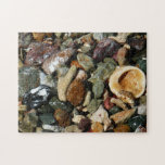 Shells, Rocks and Coral Beach Nature Theme Jigsaw Puzzle