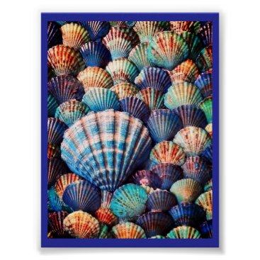 Beach Themed Shells, Shells  Shells Beach Posters