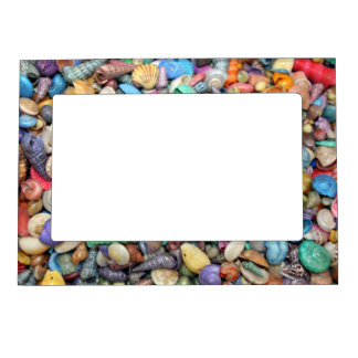 Shells, Shells, Shells Magnetic Picture Frame