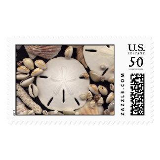 Shells Stamp