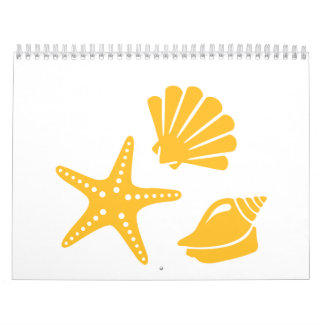 Shells starfish calendar