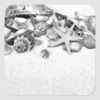 Shells & Starfish Stickers