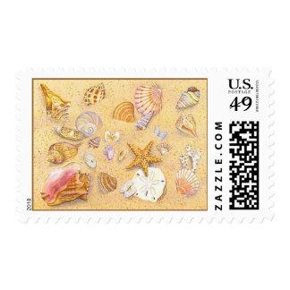 Shellscape 1 stamp