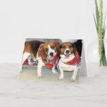 Shelter Beagles Photo Card