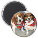Shelter Beagles Photo Magnet