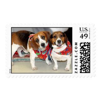 Shelter Beagles Photo Postage