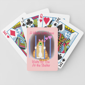Shelter Cat Bicycle Playing Cards