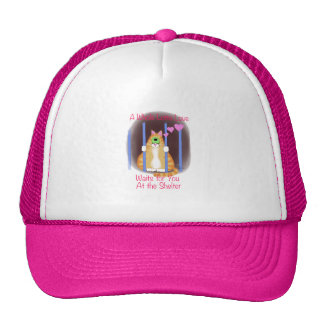Shelter Cat Trucker Hat