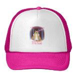 Shelter Cat Mesh Hats