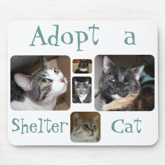 Shelter Cat Mousepad
