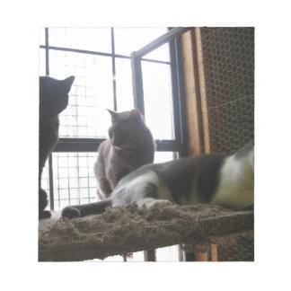 Shelter Cats Notepad