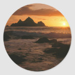 Shelter Cove Classic Round Sticker