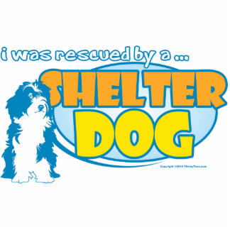 Shelter Dog Cutout