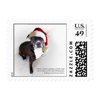 Shelter Dog Stamps