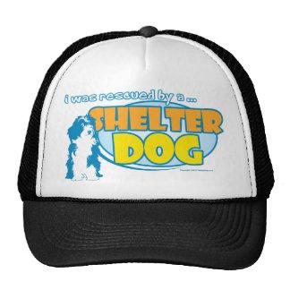 Shelter Dog Trucker Hat