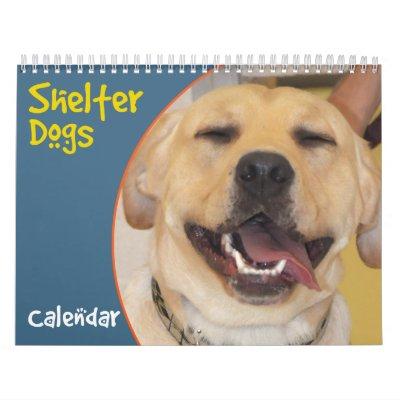 Purebred Breeders Puppies For Sale Shetland Sheepdog_reviews