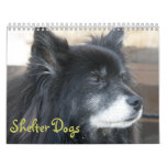 Shelter Dogs Calendar