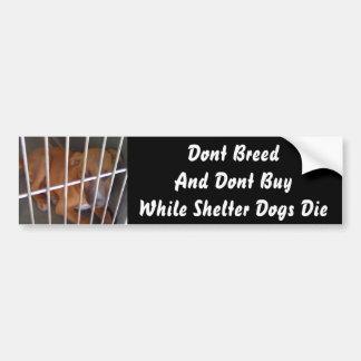 Shelter Dogs Die Bumper Sticker
