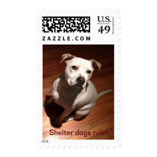 Shelter Dogs Rule Postage Stamps