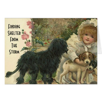 Shelter From The Storm Pet Cat Rescue Thanks Card
