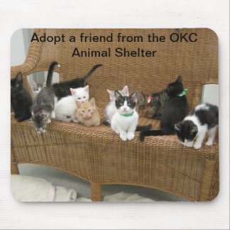 Shelter kittens mouse pad