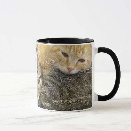 Shelter Kittens Mug
