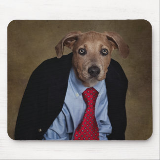 Shelter Pets Project - Mr. Burns Mouse Pad