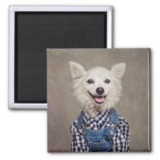 Shelter Pets Project - Tonka Magnet