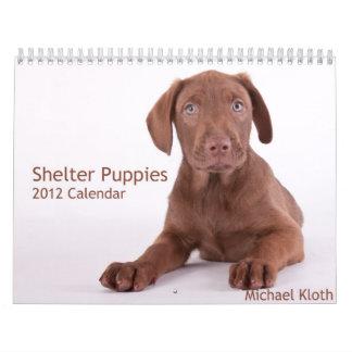 Shelter Puppies 2012 Wall Calendar