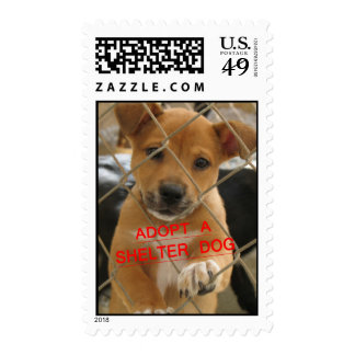 SHELTER PUPPY STAMPS