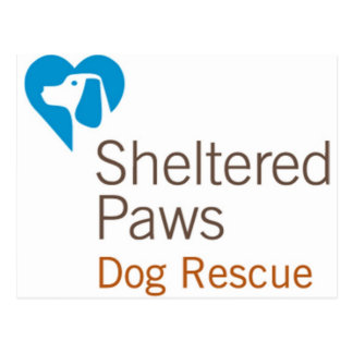 Sheltered Paws Dog Rescue Postcard