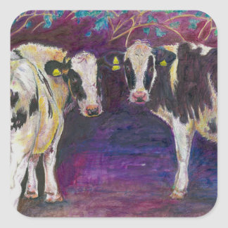 Sheltering cows 2011 square sticker