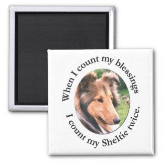 Sheltie Blessing Magnet