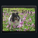 """Sheltie Calendar 2015<br><div class=""""desc"""">Shetland Sheepdogs (Shelties) are beautiful,  friendly and intelligent companions. They are happy to be with you wherever you go and love to play with people and other dogs.</div>"""