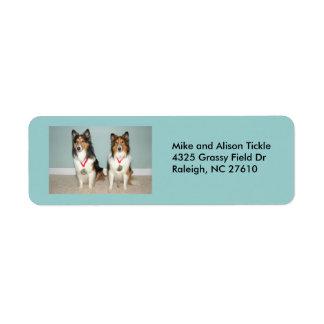 Sheltie Champs! Custom Return Address Label